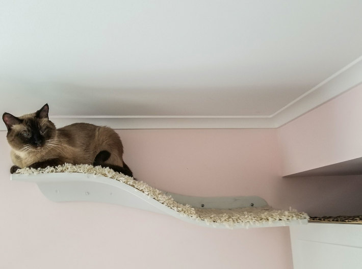 Wave of Cuteness Cat Shelf 3d printed