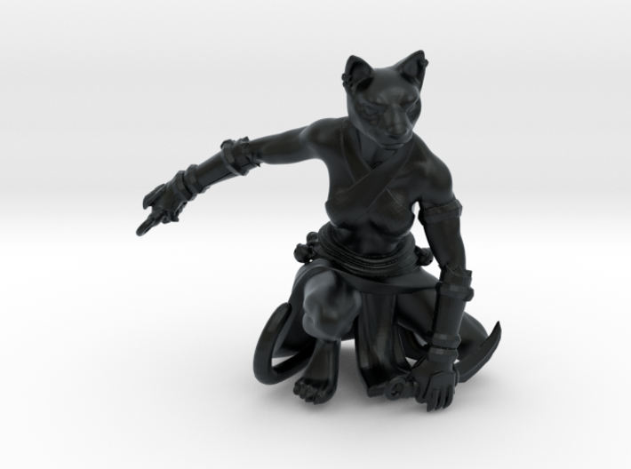 Tabaxi Rogue (Female) 3d printed