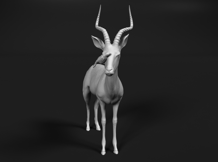 Impala 1:20 Male with Red-Billed Oxpecker 3d printed
