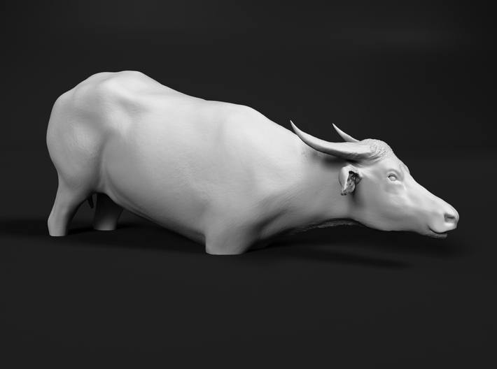 Domestic Asian Water Buffalo 1:76 To Deeper Water 3d printed
