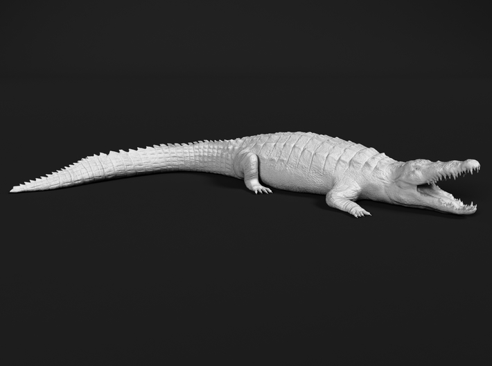 Nile Crocodile 1:45 Mouth Open 3d printed