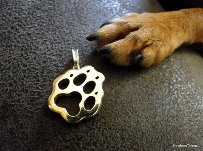 Little Paw 3d printed Paw Pendant polished Brass