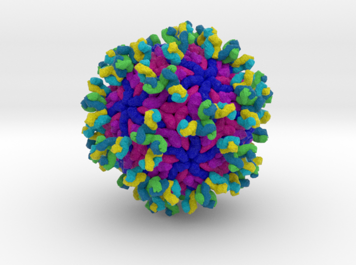 Antibodies Bound to Zika Virus 3d printed