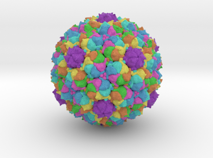 Staphylococcus Phage 80α 3d printed