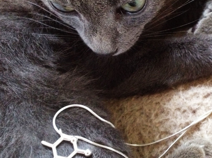 catnip molecule pendant 3d printed catnip pendant in polished silver, cat and chain not included