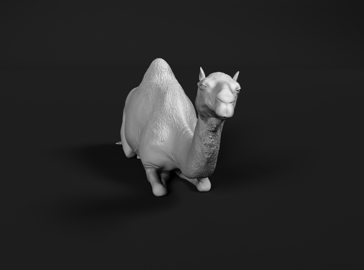 Dromedary 1:32 Lying Female 3d printed