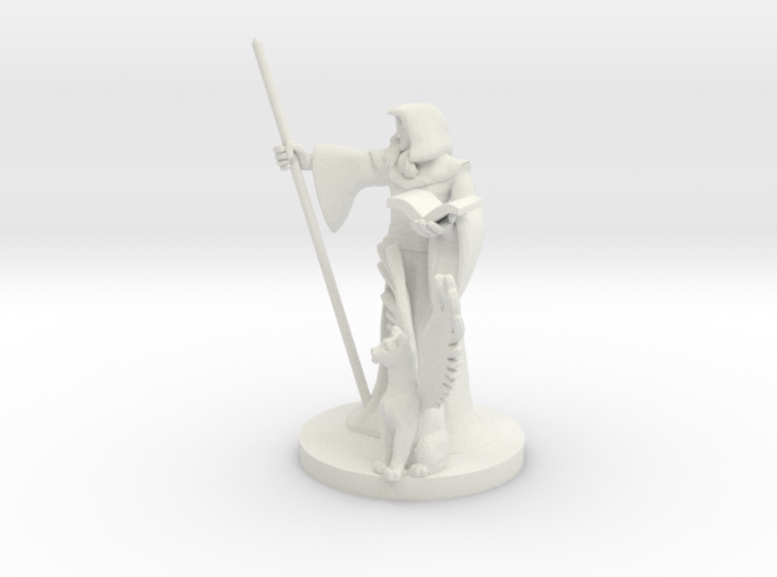 Elf Wizard and Tressym Familiar 3d printed