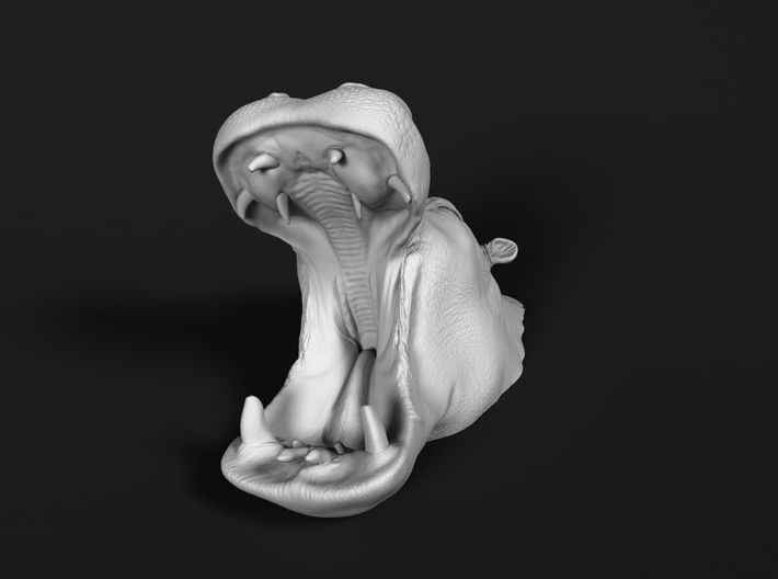 Hippopotamus 1:160 Mouth Open in Water 1 3d printed