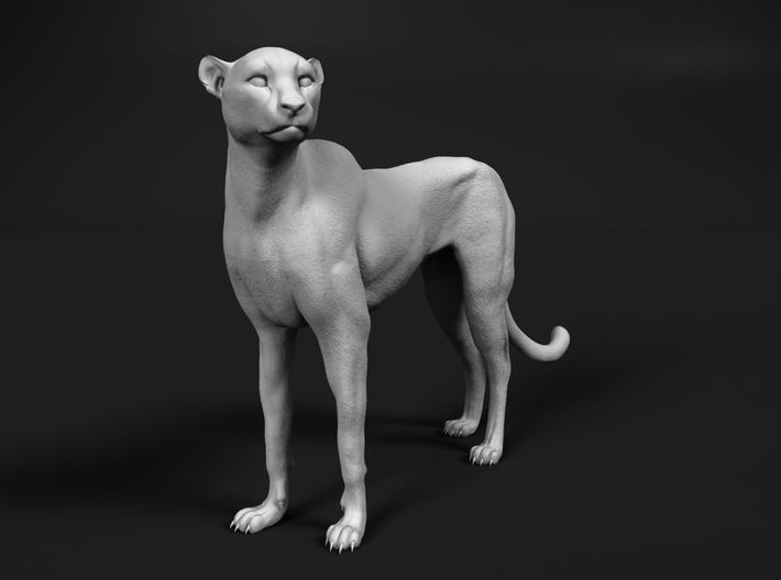 Cheetah 1:12 Standing Female 3d printed
