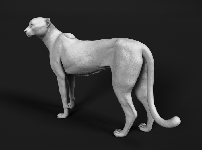 Cheetah 1:32 Standing Female 3d printed
