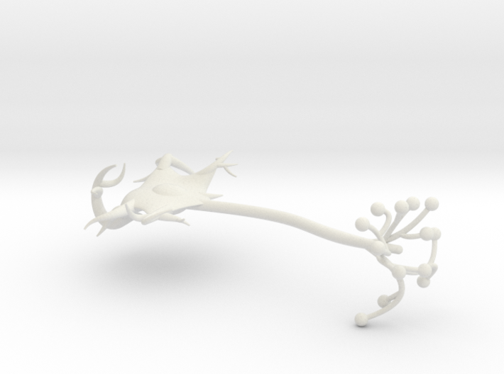 neuron cell model 3d printed