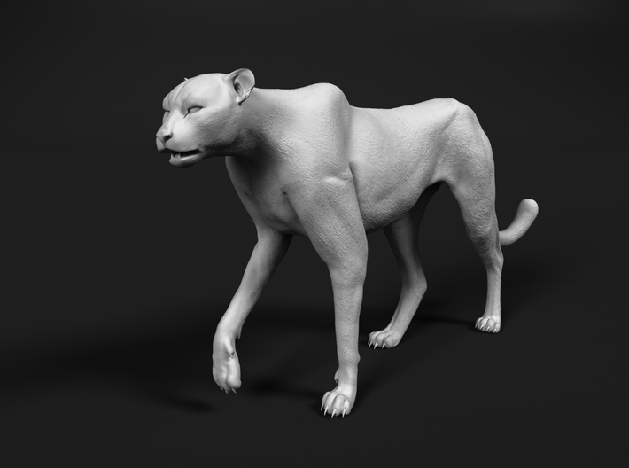 Cheetah 1:9 Walking Male 3 3d printed