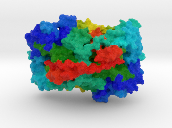 Vascular Cell Adhesion Protein 3d printed