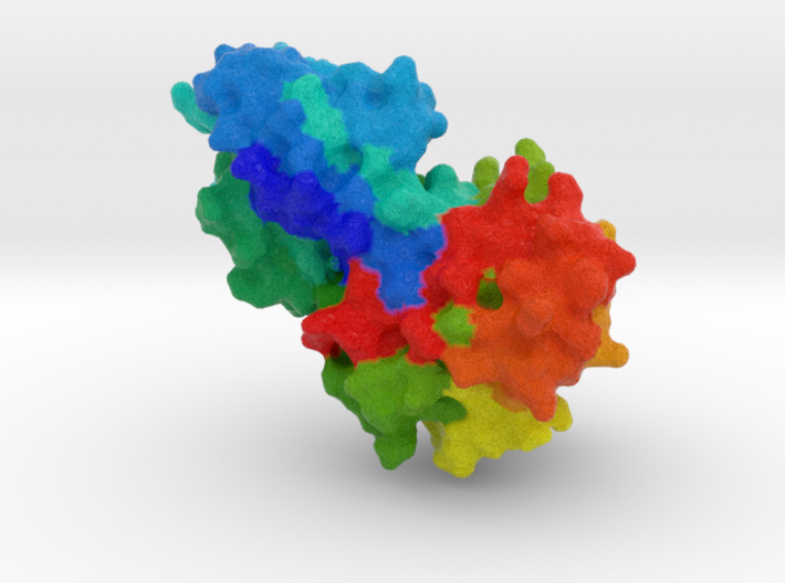 Mevalonate Kinase 3d printed