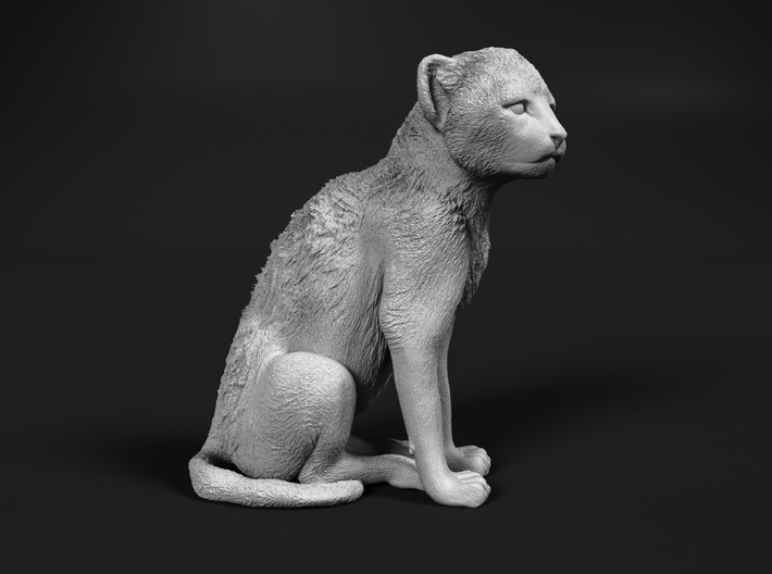 Cheetah 1:72 Sitting Cub 3d printed