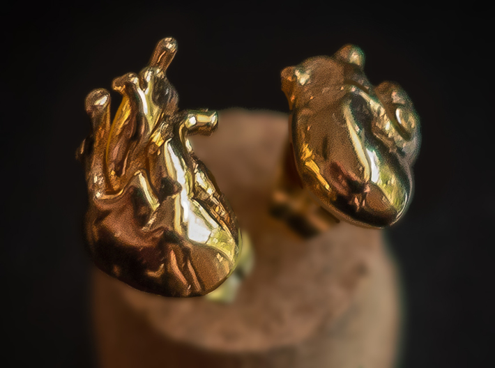 Heart Rhythms: Anatomically-Accurate Post Earrings 3d printed