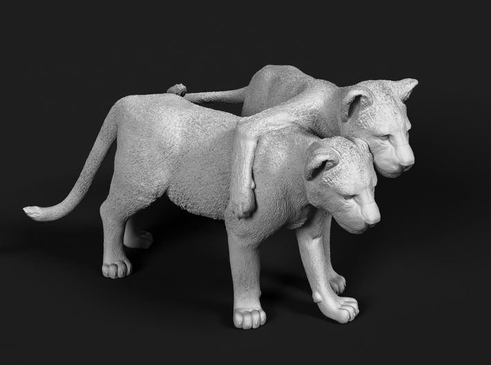 Lion 1:76 Cubs distracted while playing 3d printed