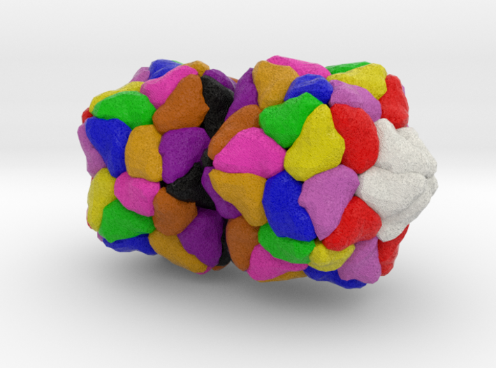 Ageratum Yellow Vein Virus 3d printed