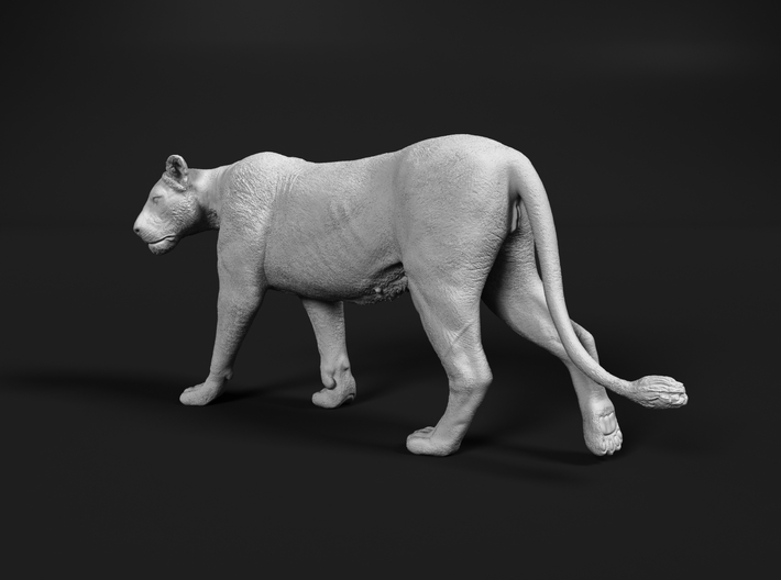 Lion 1:16 Walking Lioness 2 3d printed