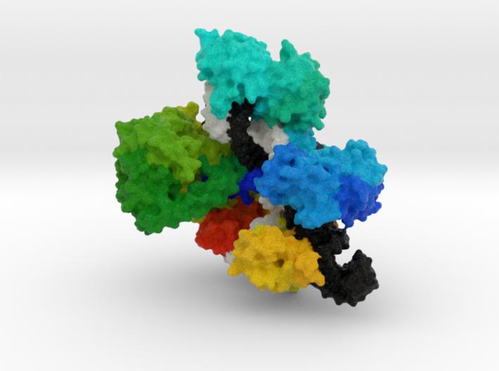 CRISPR-Cas9 3d printed