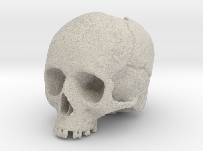 Morti Penholder / Mini Vase (Memento Mori) 3d printed Sandstone is perfect for this piece.