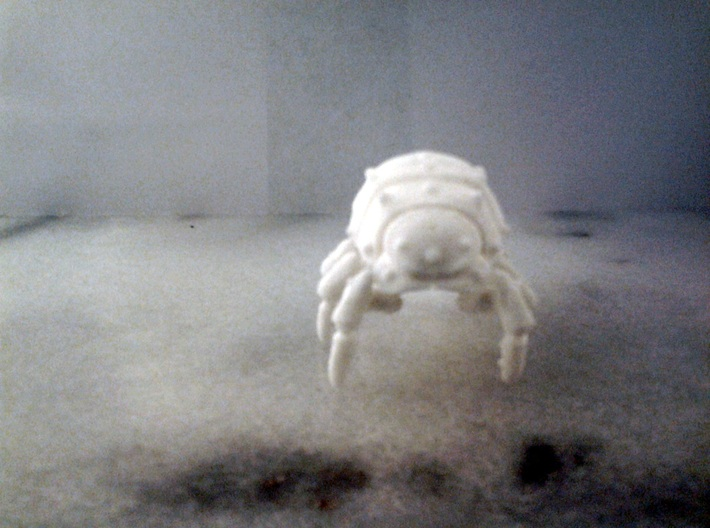 Articulated Predominant Isopod A Ball-Jointed Kit 3d printed