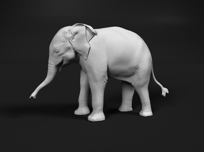 Indian Elephant 1:48 Standing Female Calf 3d printed