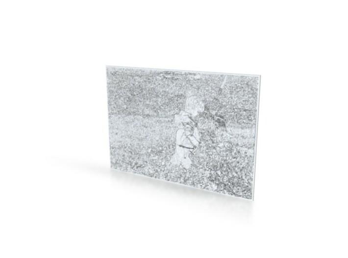 SHAPEWAYS PHOTO SHAPER 3d printed