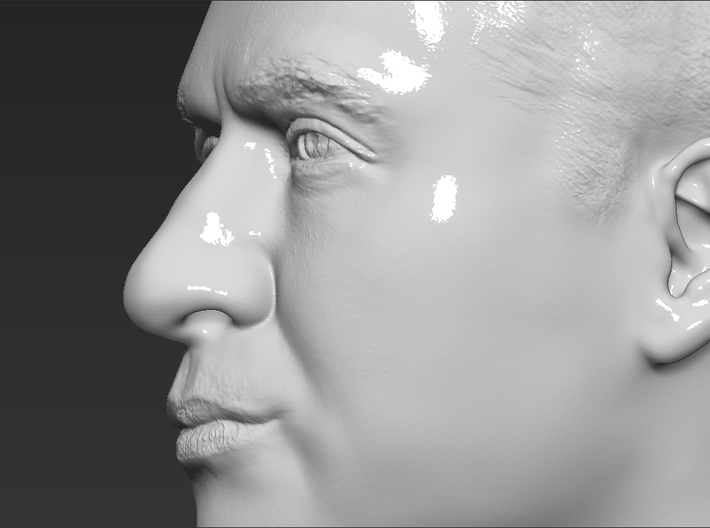Prince William bust 3d printed