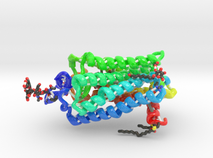 Encephalopsin Protein (Large) 3d printed