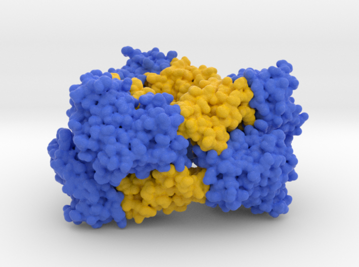 M.tuberculosis MbcT-MbcA toxin-antitoxin complex 3d printed