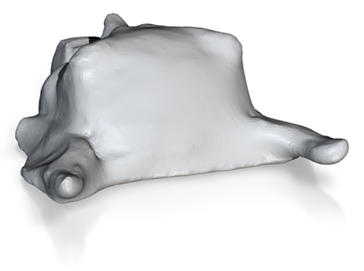Maximum Overdrive Goblin 1/25 3d printed