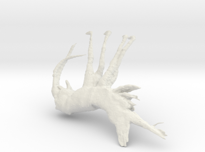 Shrimp, 150mm version 3d printed