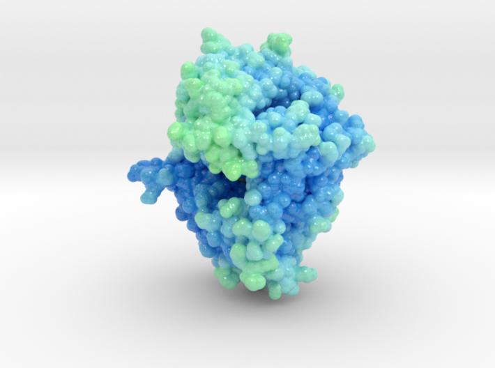 DPP4-Sitagliptin Complex 2P8S 3d printed