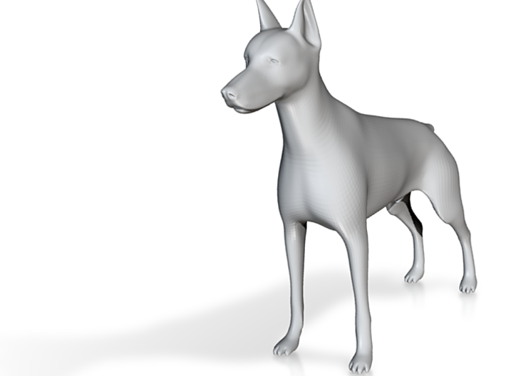 Doberman Pinscher 3d printed