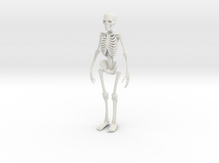Free Standing Skeleton Figure 3d printed