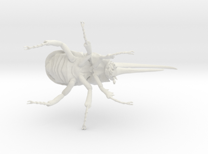 Herculesbeetle10scaled Fixed Hollow .6mmhole 3d printed