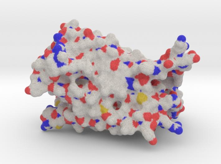 TMD PTHR1-GPCR model 3d printed