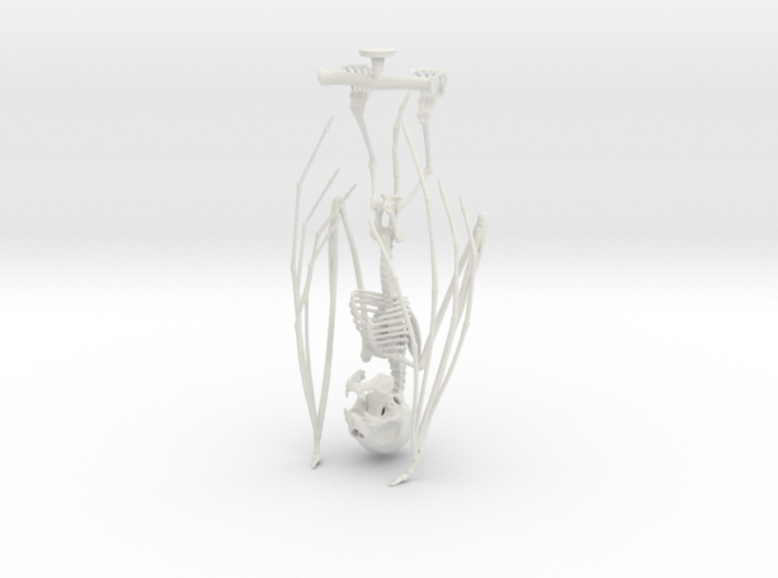 Vampire Bat Skeleton  3d printed