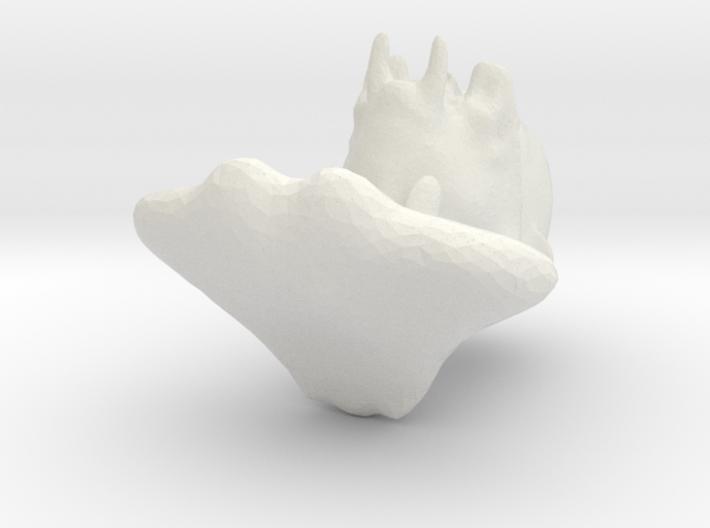 deszk nacsa 3d printed