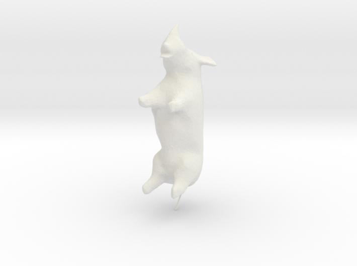 Ceratotherium simum (Rhinoceros) 3d printed