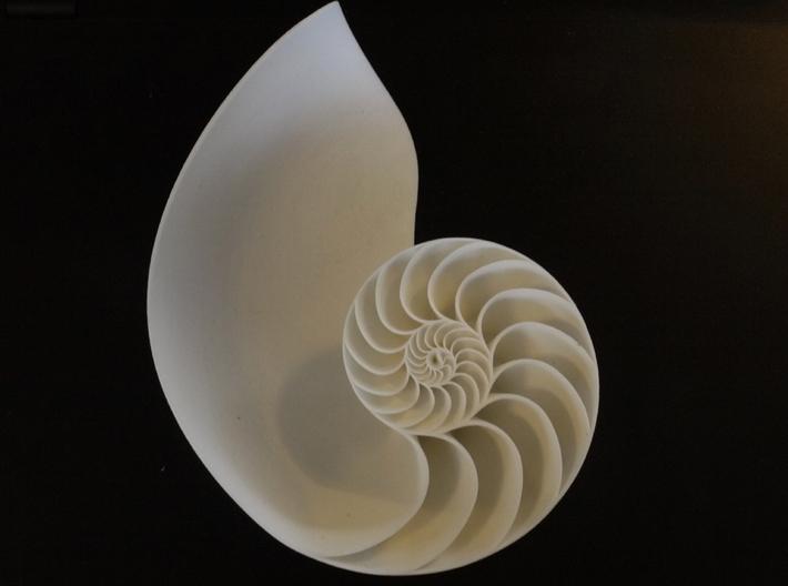 Nautilus Seashell 3d printed