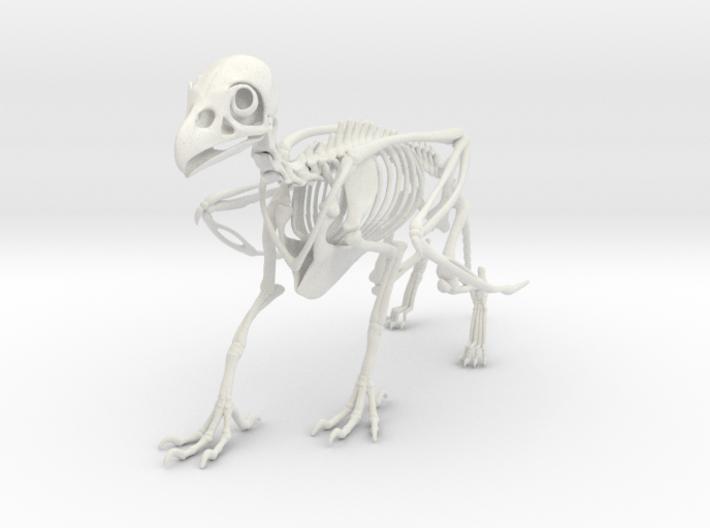 Griffin Skeleton 3d printed