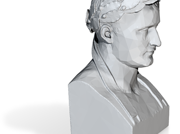 Napoleon Bust 3d printed