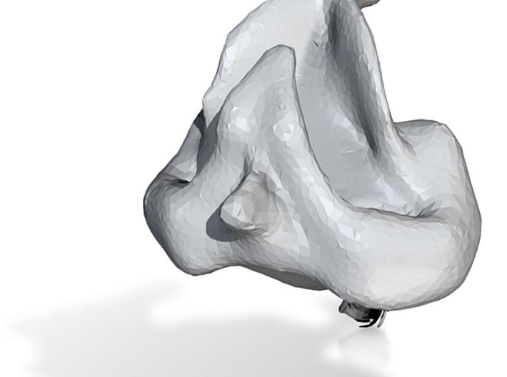 Dodó kacsa 3d printed