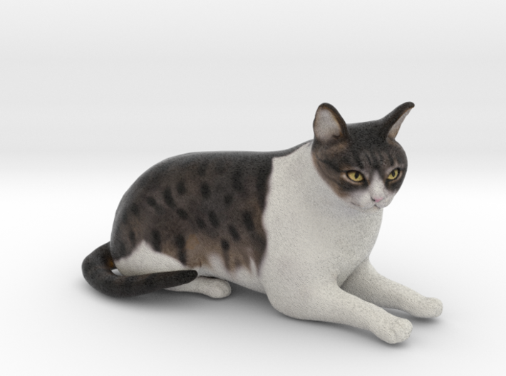 Custom Cat Figurine - Alfie 3d printed