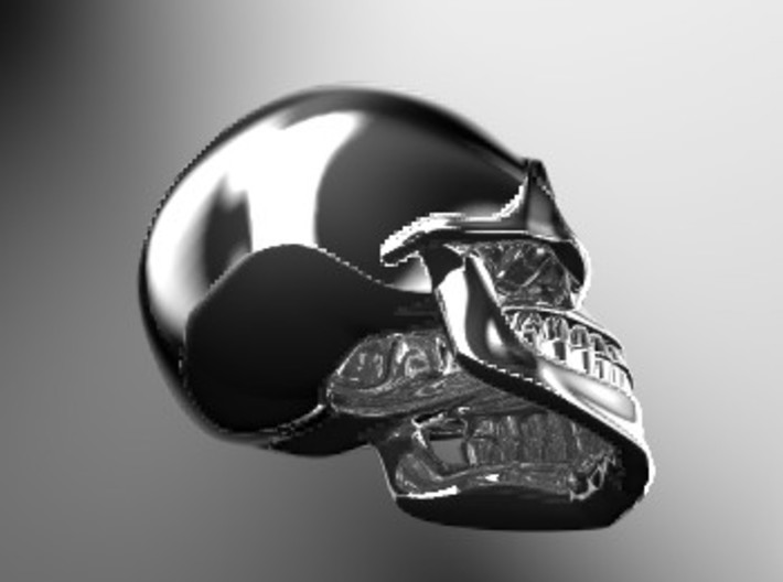 SKULL( install your order.) 3d printed
