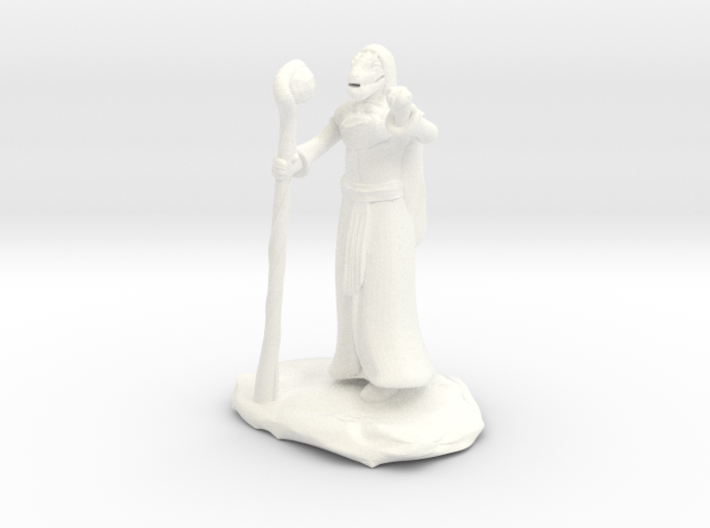 Dragonborn Wizard Outlander Guide with Staff 3d printed