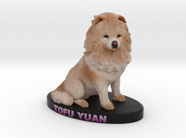 Custom Dog Figurine - Tofu Yuan 3d printed