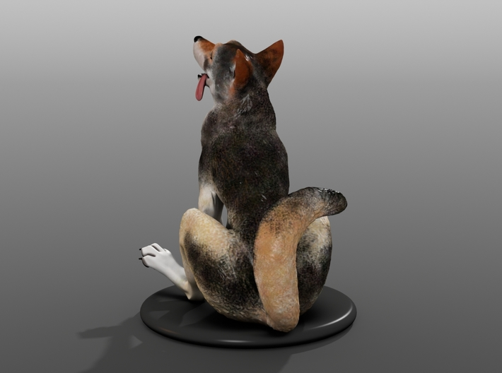 Silly Wolf 3d printed Example 5